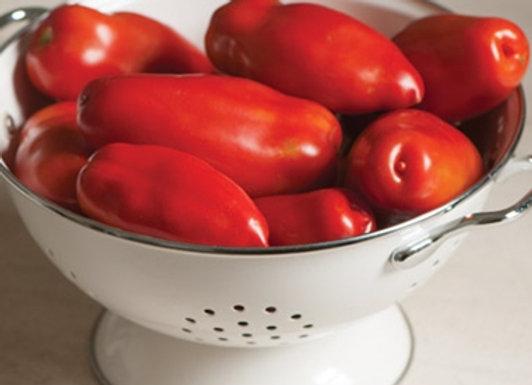 Tomatoes - Paste