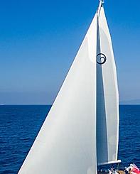 Kraken branded sail