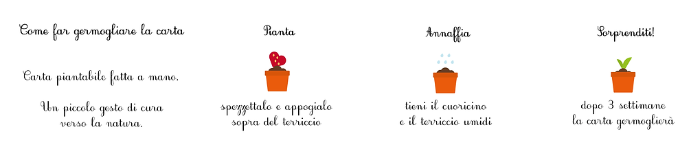 banner carta piantabile(1).png