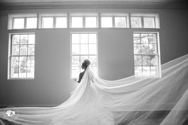 Lifelong_Photography_Studio_BellaCosa-20