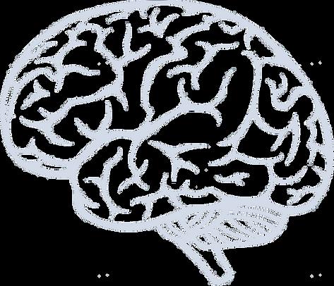 ADDBack Brain