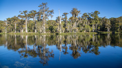 Wakulla Springs, Florida, USA