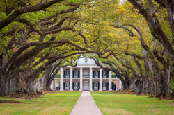 Oak Alley Plantation, Vacherie, Louisiana, USA
