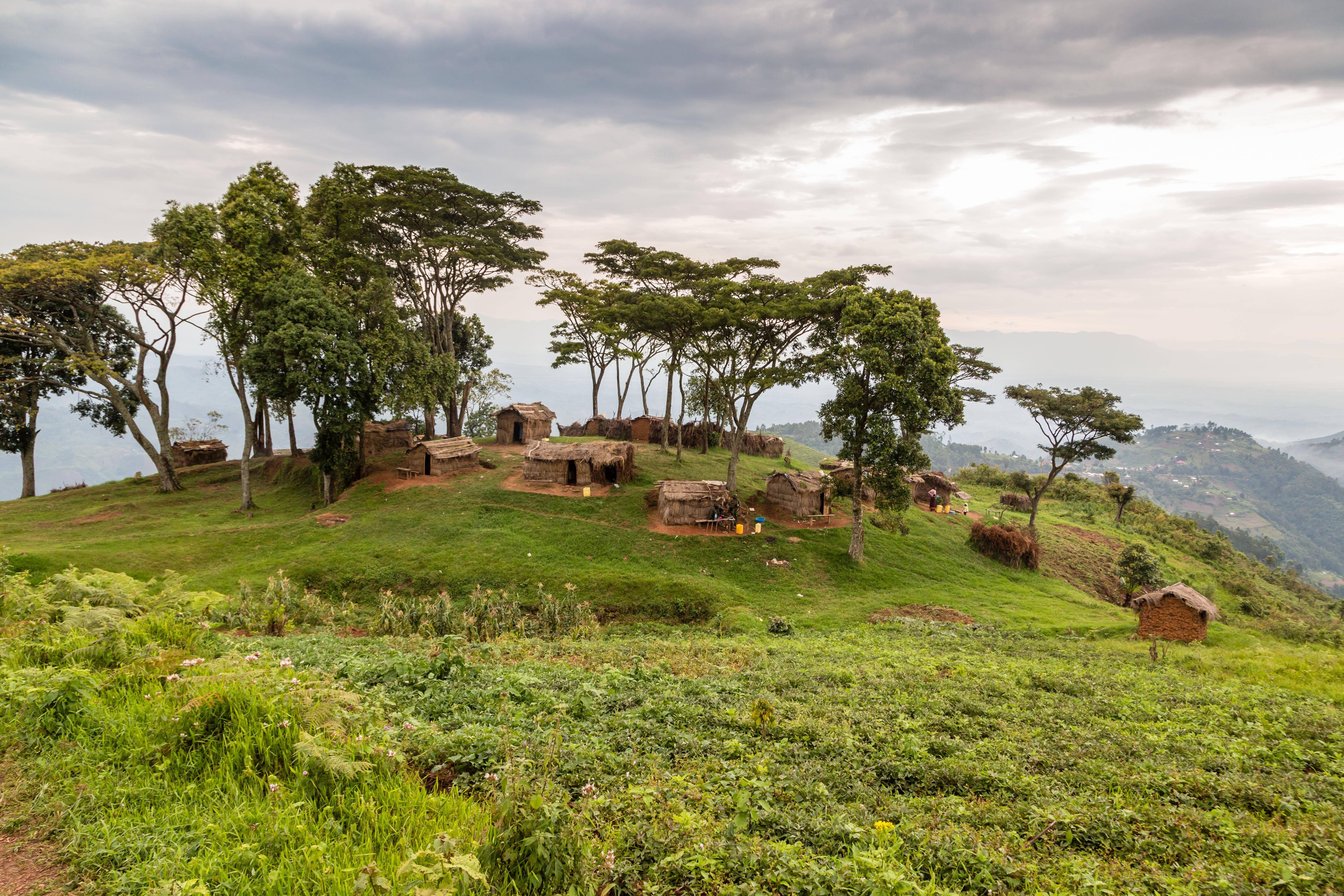 Near Bwindi Impenetrable Forest, Uganda