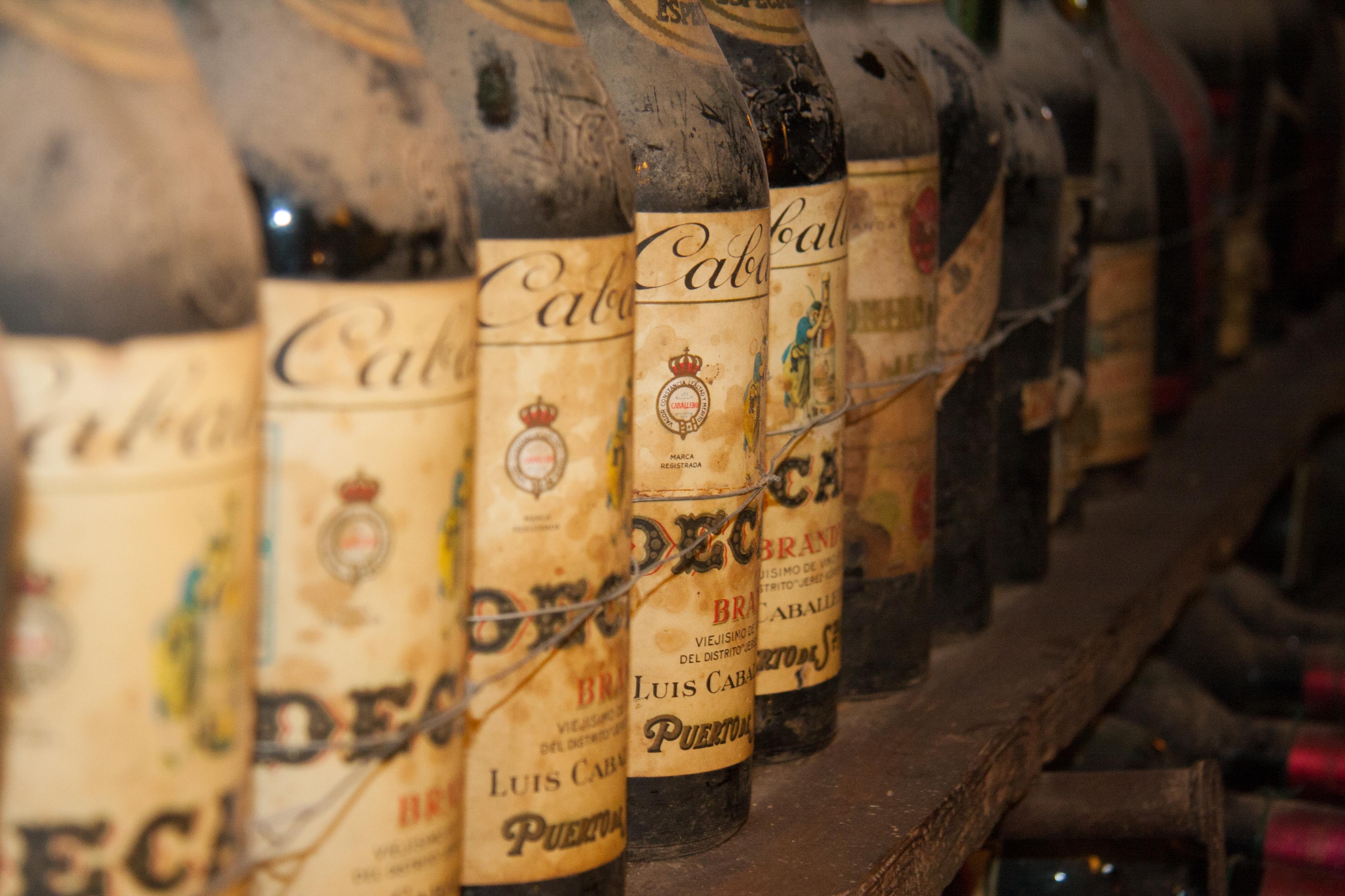 Wine Cellar, Tuscany, Italy