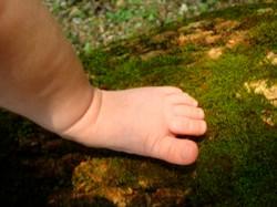 baby feeling moss