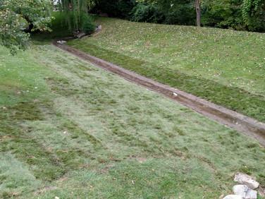 Yard Repair After