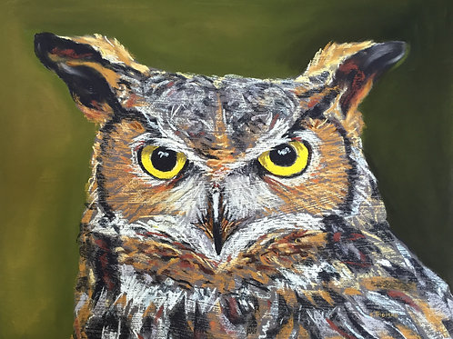 ST42 Barney - Owl