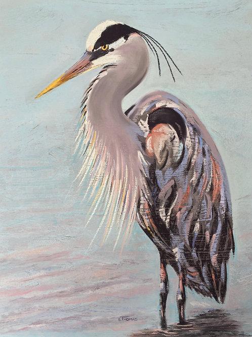 ST11 Ramsey - Blue Heron