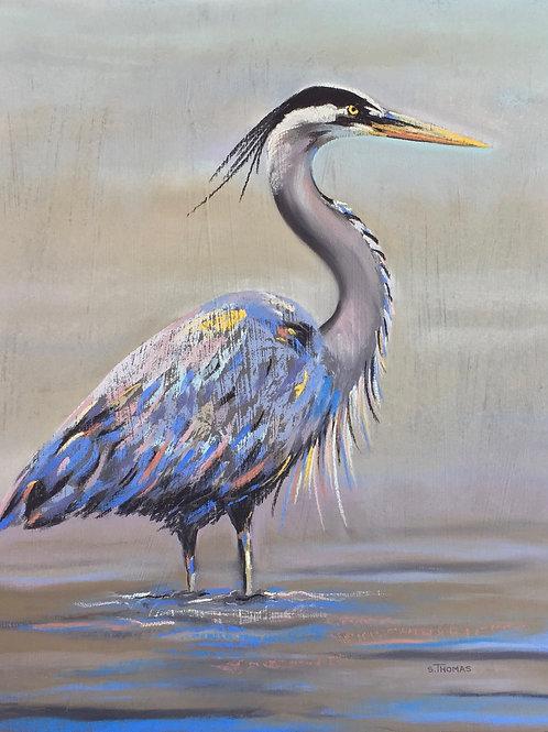 ST46 Rachel - Blue Heron