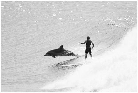 bluespherephotography.com © - OCEAN VIEWS - Surfing Together