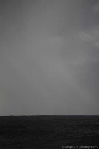 Blacklight Series (c) bluesphere photography-9382