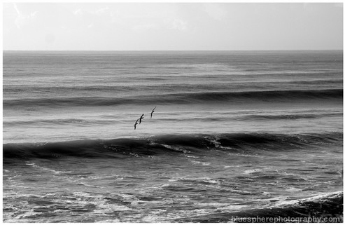 bluespherephotography.com © - OCEAN VIEWS - Water + Wings Burleigh