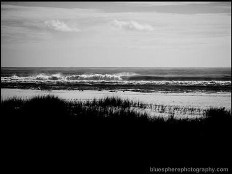 bluespherephotography.com © - OCEAN VIEWS 4 B+W