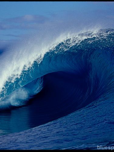 bluespherephotography.com_©_-_OCEAN_VIEW