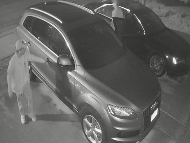 Persons Of Interest: Burglary Of A Motor Vehicle