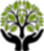 courseimage-141316-money-tree-clip-art(1