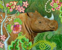 Endangered Sumatran Rhino