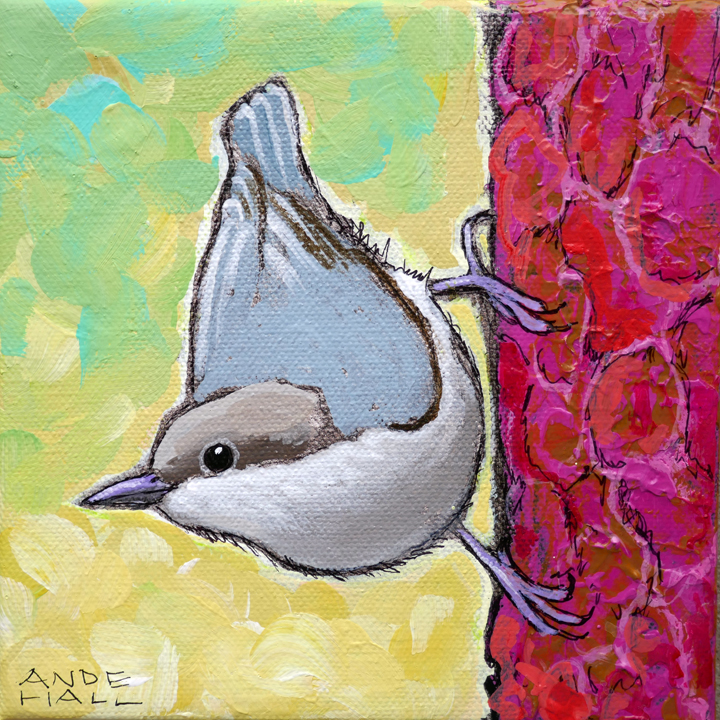 SOLD - PYGMY NUTHATCH 2