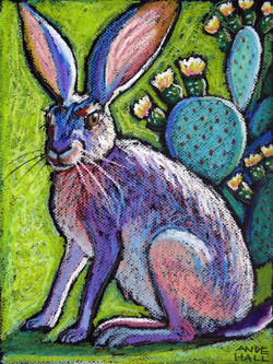 Blooming Jackrabbit and Prickly Pear int