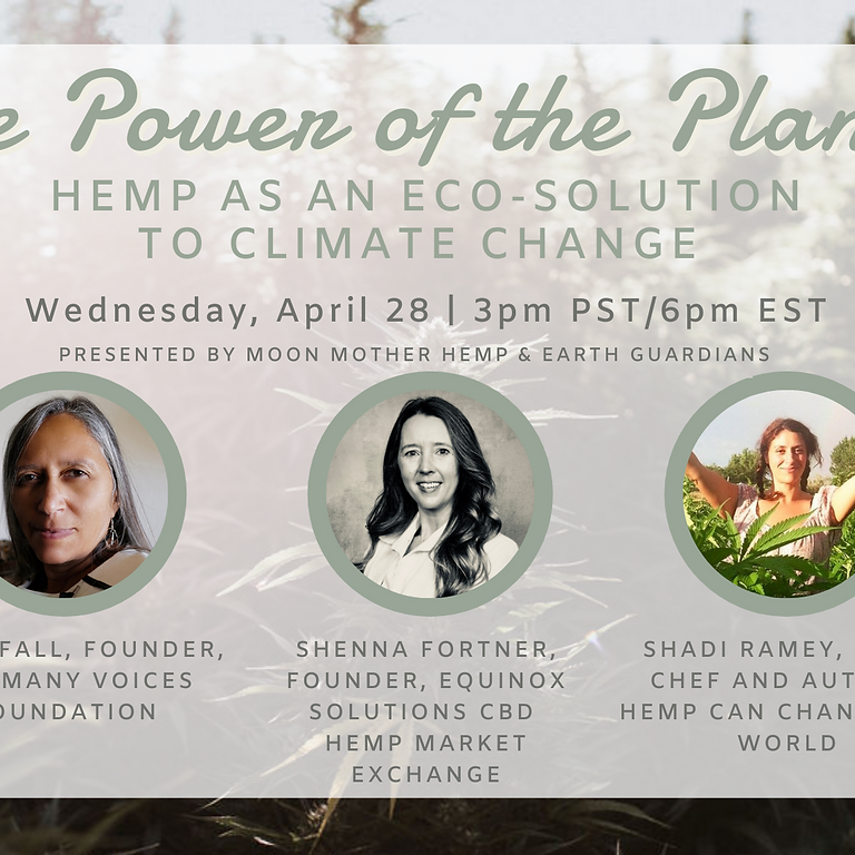The Power of the Plant: Hemp as an Eco-Solution to Climate