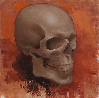 skull study.JPG