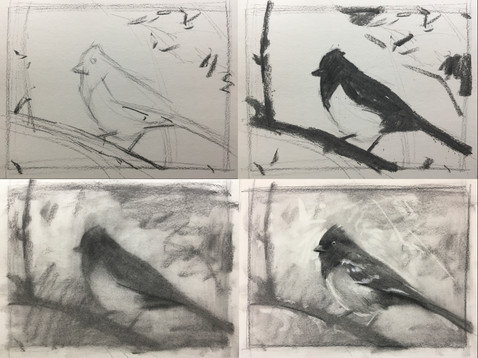 charcoal bird step by step TAS1.jpg