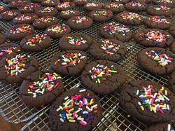 Dutch Chocolate Christmas Cookies