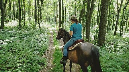 Horseback riding in Central PA