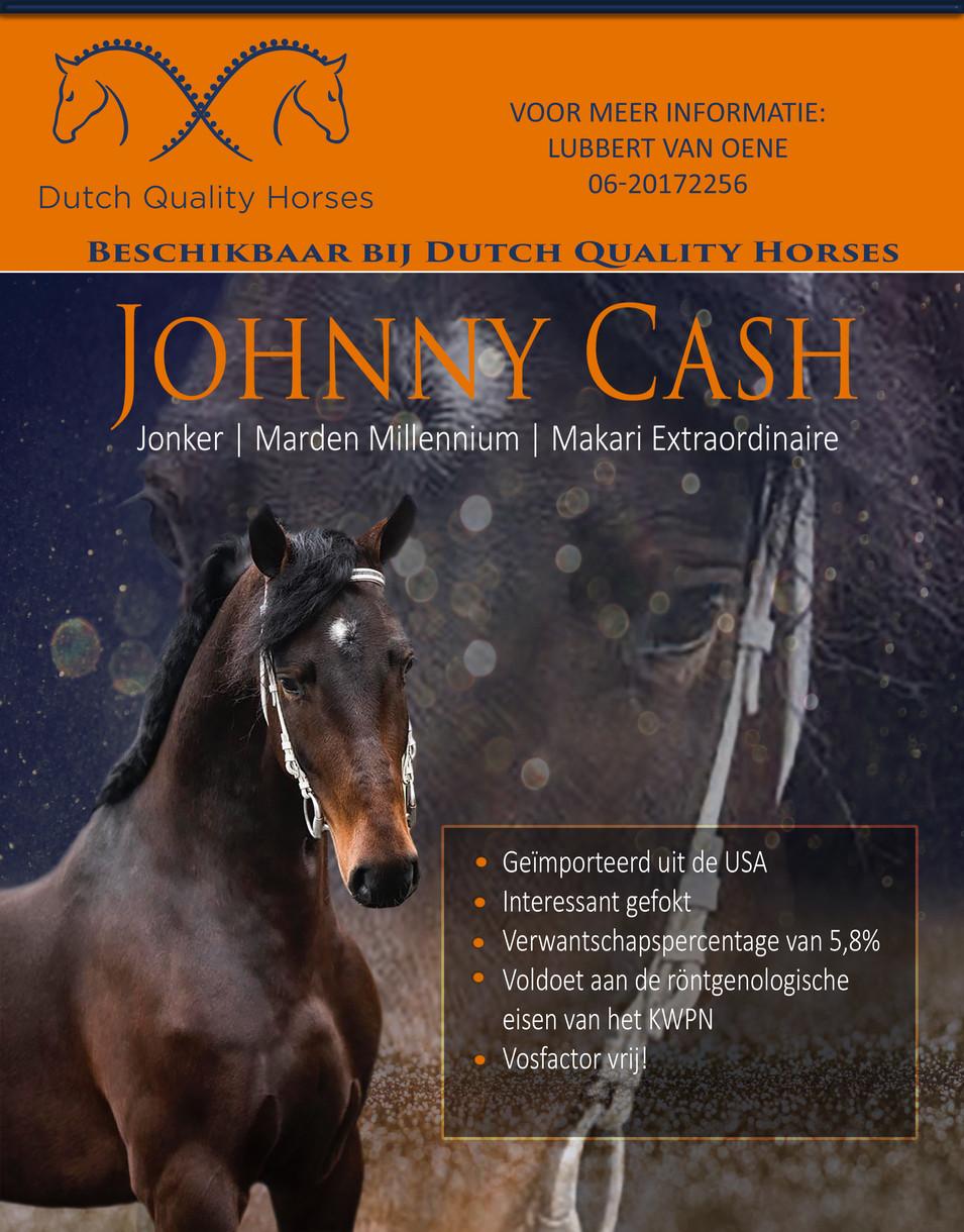 Johnny CashCollage.jpg