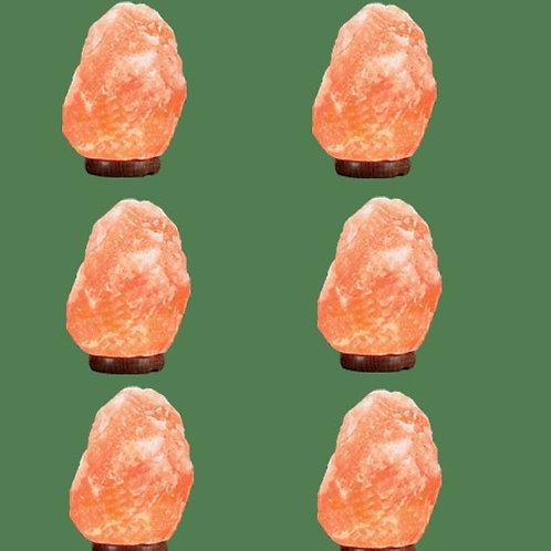 Himalayan Salt Lamp Natural Pink Micro 6 units (3-5 lbs each) Himalayan