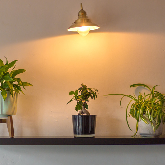 We love plants!!!