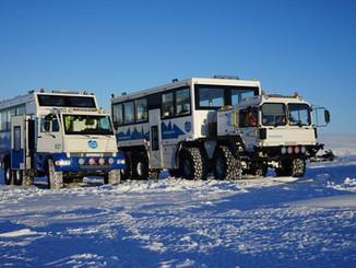 KAT1, Mowag Ice bus