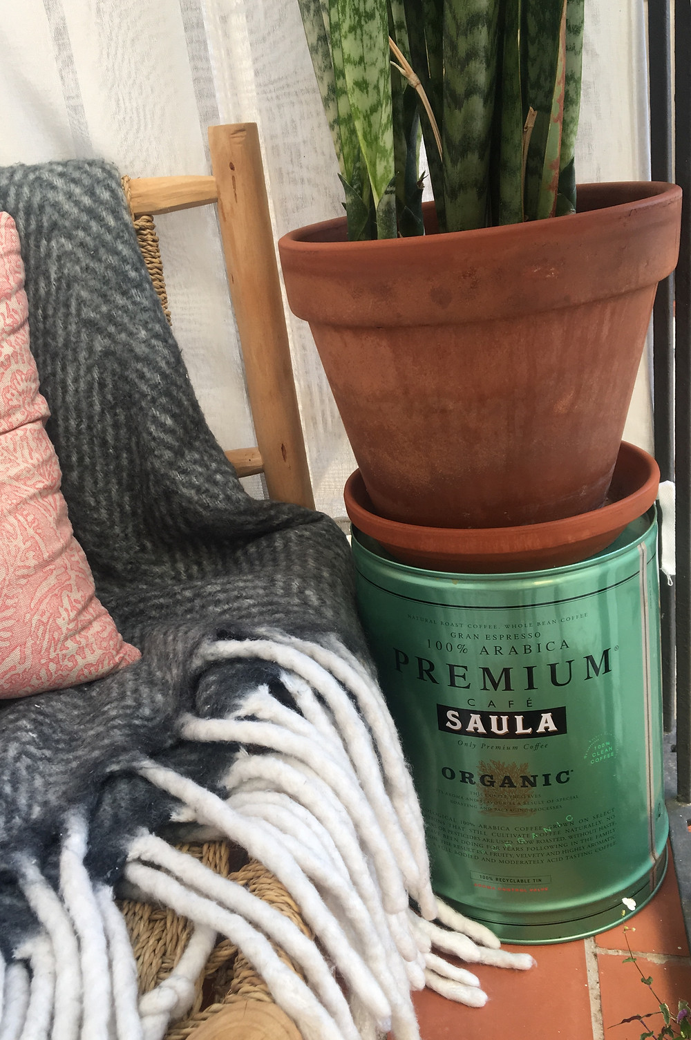 A coffee tin reused as a plant stand