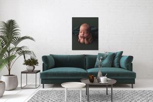 lounge room green.jpg