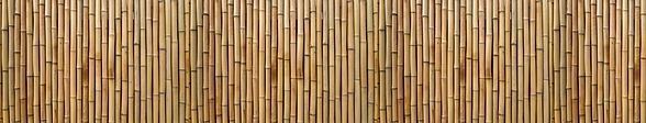 Bamboo BAnner.png