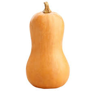 Butternut Squash (The Netherlands)