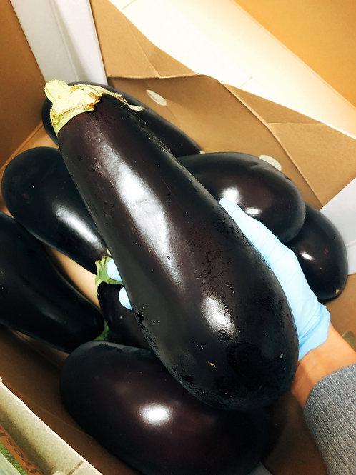 Signature Jumbo Eggplant (The Netherlands)