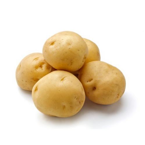 Agatha Grenaille Potato (France)