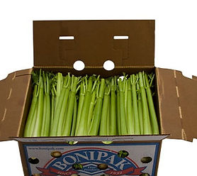 Celery-Box-Bonipak-Produce-01_edited.jpg