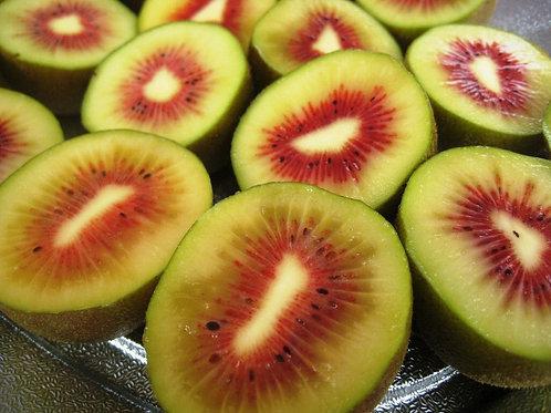 Rainbow Kiwi Fruits [4 pcs] (Japan)