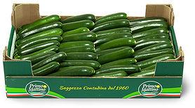 zucchine-lunghe-cassetta-in-cartone.jpg