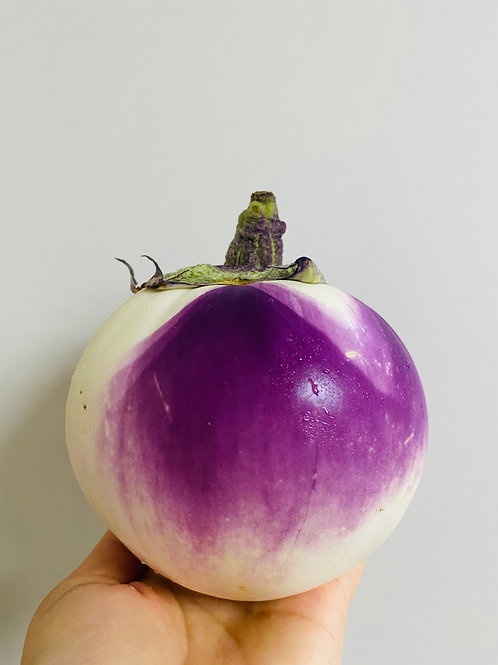 Round Purple Eggplant (The Netherlands)