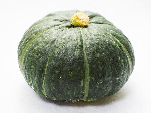 Hokkaido Pumpkin (Japan)