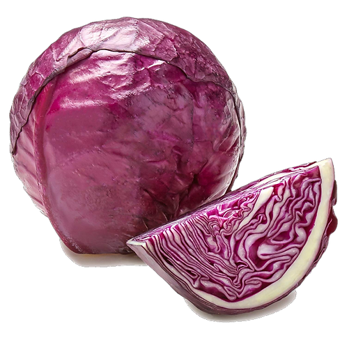Purple Cabbage (Japan)