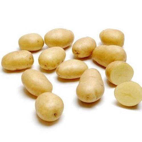 Baby Potato (The Netherlands)