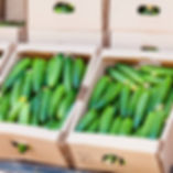 75050831-cucumber-in-box-on-sale-cucumbe