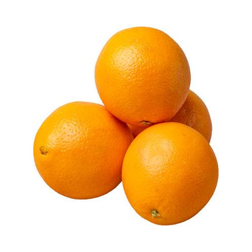 Bee Orange 5 pcs (US)