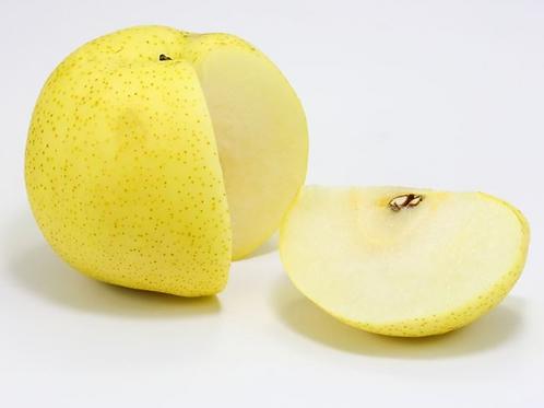 Japanese Pear (Japan)