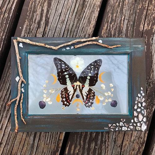 Moonlight Treasure Box